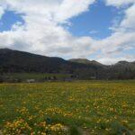 Francoska stran Pirenejev